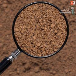 دانلود پاورپوینت پروژه بررسی خصوصيات شيميايی و فيزيکی خاک