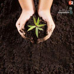 دانلود پاورپوینت پروژه کشاورزی ارگانیک